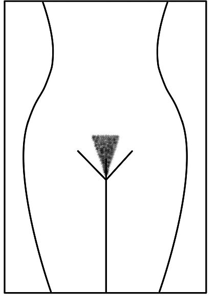 Guide to anal creampies